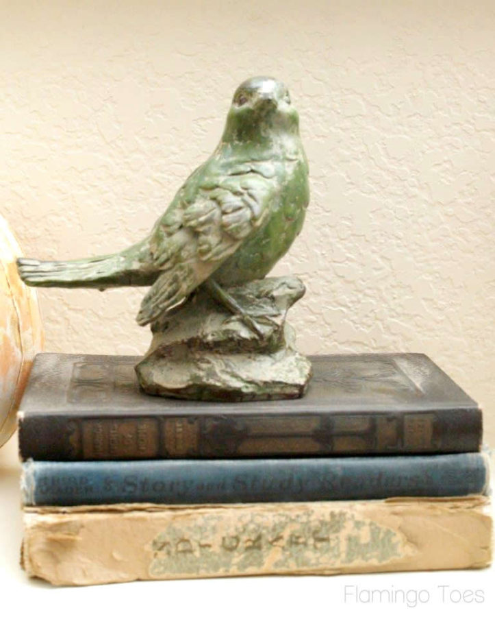 Pretty Bird and Books