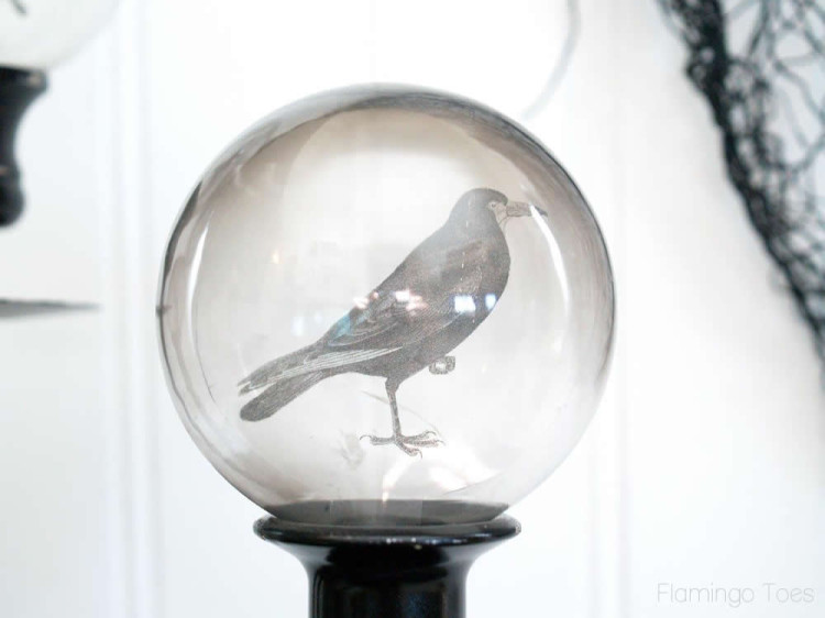 Crystal Ball Crow
