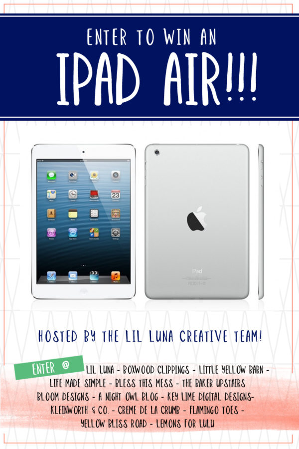 iPad Air Giveaway - Enter to win today on flamingotoes.com