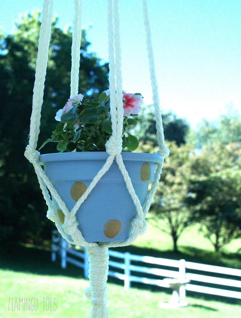 DIY Polkadot Hanging Planters