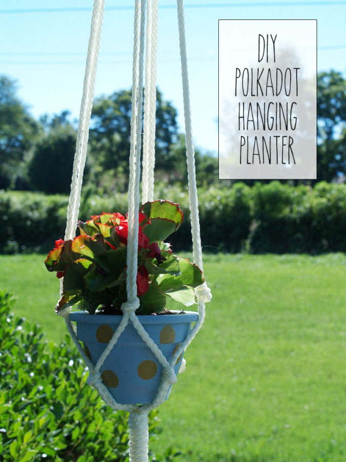 Easy Polkadot Hanging Planter - this is so cute!