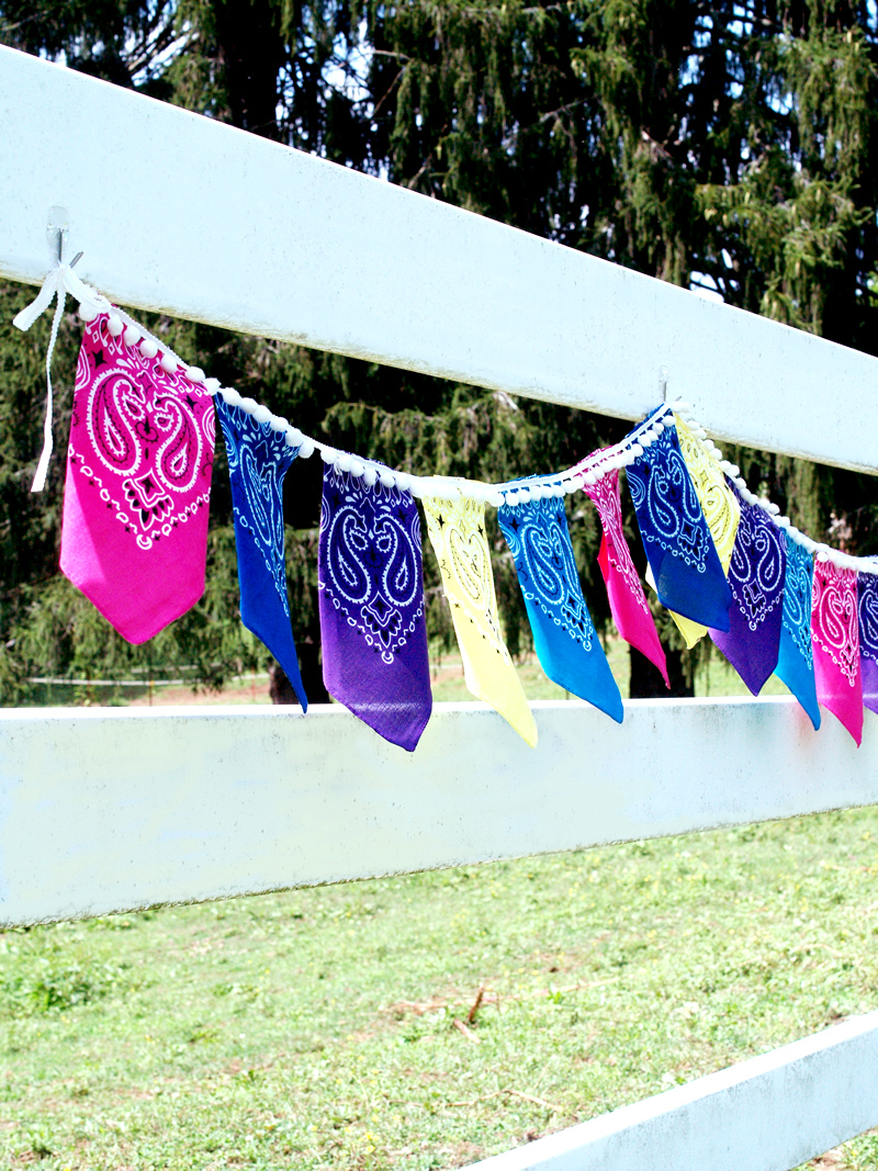 Pretty Summer Bandana Pennant