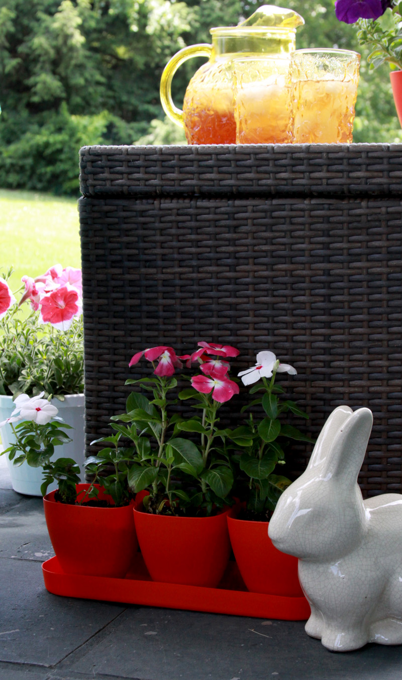 Summer flowers and decor
