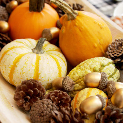 Pumpkins and Plaid – Fall Table Decor