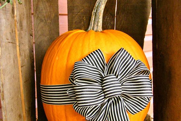 fall-pumpkins-bows