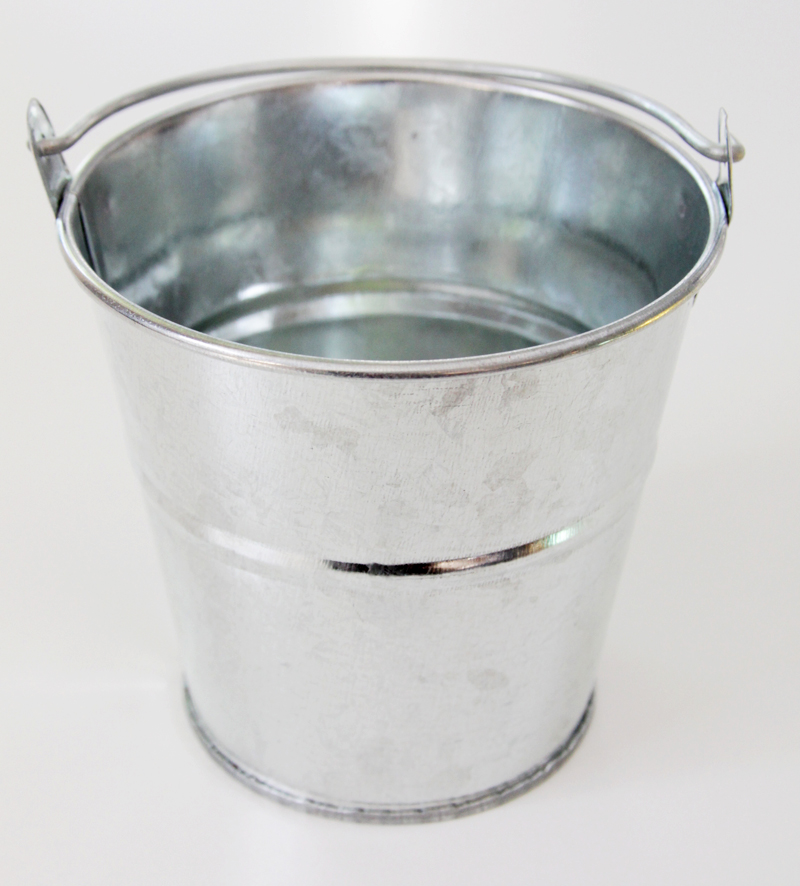 Galvanized Pail for plants