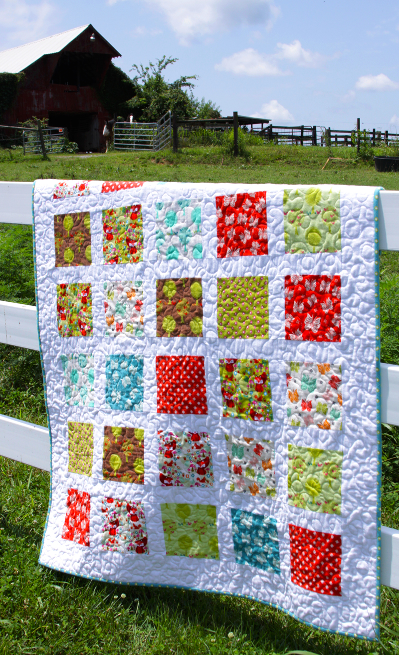 Acorn Valley Windows Quilt