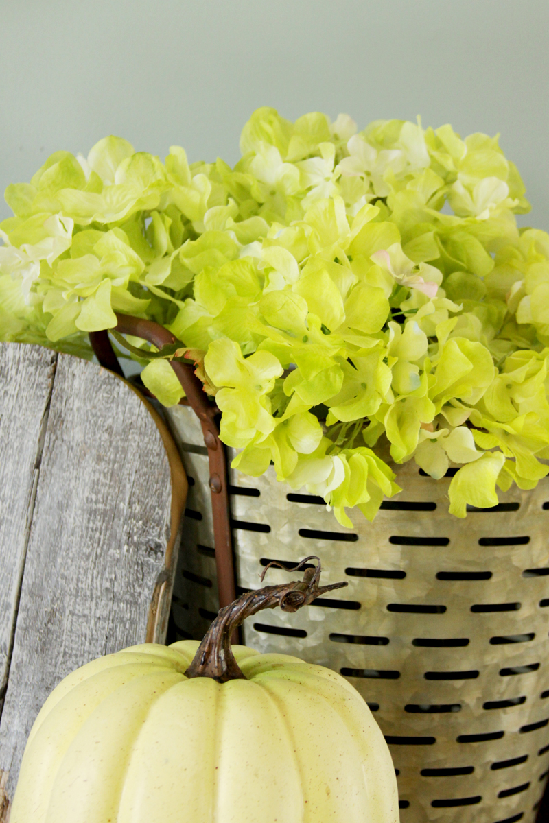 Hydrangeas and Olive Bucket