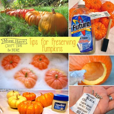 Must Have Craft Tips: Preserving Pumpkins