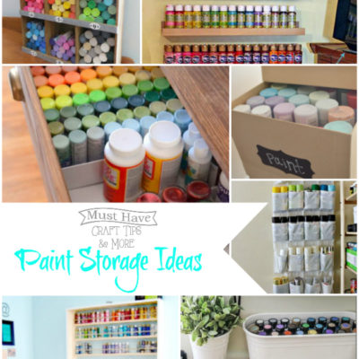 Paint Storage Ideas and Organization