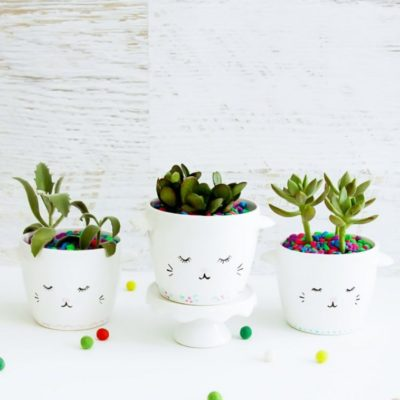 Creative Succulent and Cactus Projects to Make!
