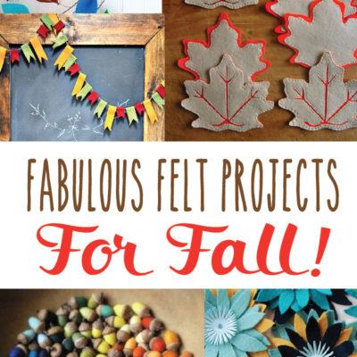 Fabulous Fall Felt Projects